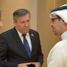 W dniach 29-30 maja 2015 r. Emiraty odwiedził Wicepremier i Minister Gospodarki Janusz Piechociński. W trakcie wizyty tłumaczem Premiera Piechocińskiego była Weronika Tomaszewska-Collins, która wzięła udział w licznych spotkaniach z przedstawicielami władz i biznesu ZEA. Infinity Media Middle East